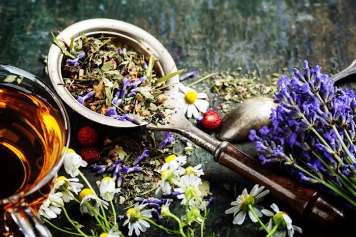 A Garden in a Tea Cup
