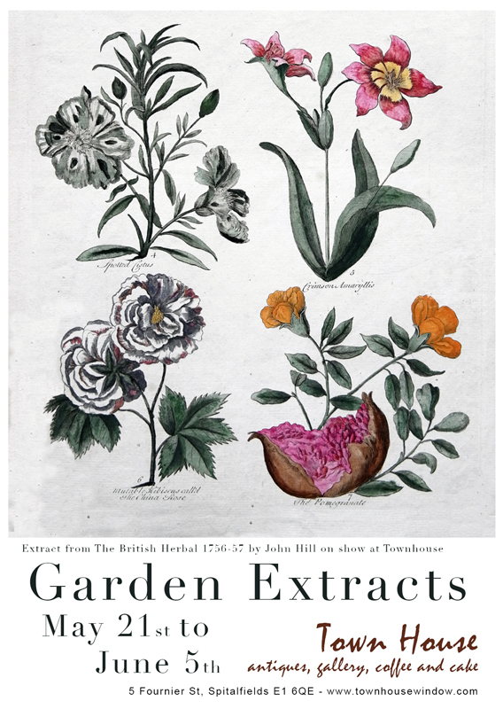 Garden Extracts Programme at Chelsea Fringe